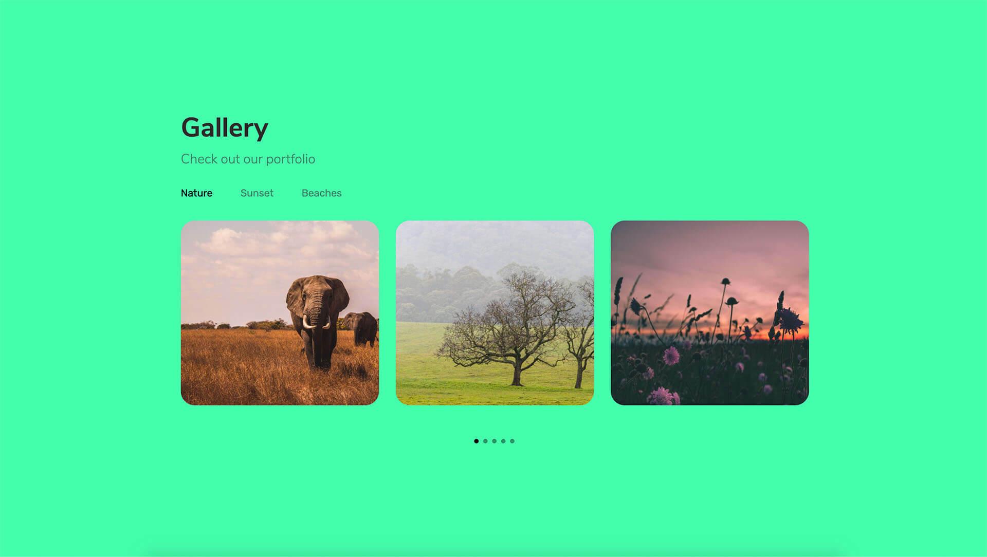 PowerPack Elements Template - Gallery 5