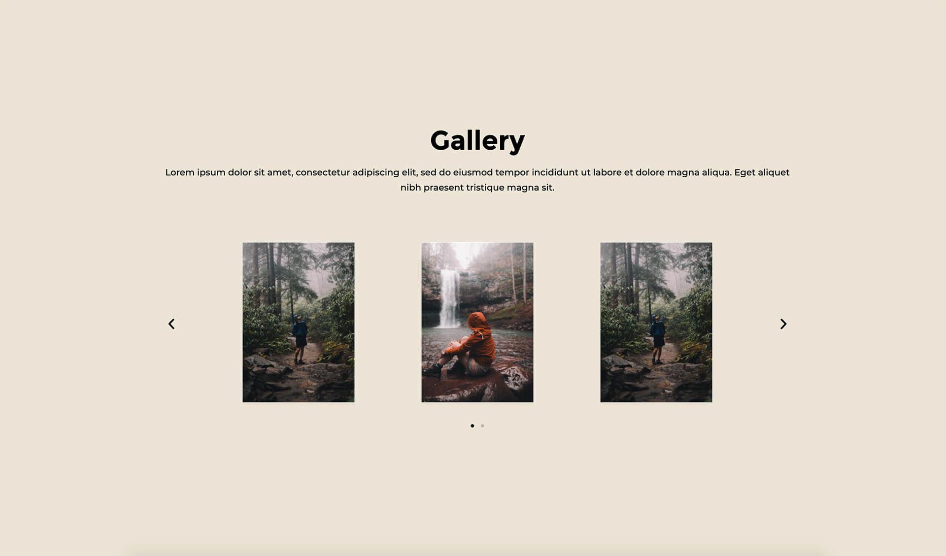 PowerPack Elements Template - Gallery 8